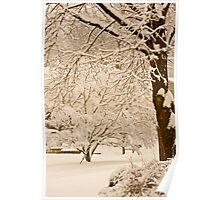 Sepia snow... Poster