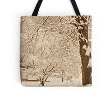 Sepia snow... Tote Bag