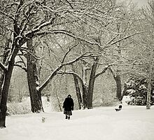 Walking the Dog in a Winter Wonderland by Bo Insogna