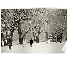 Walking the Dog in a Winter Wonderland Poster