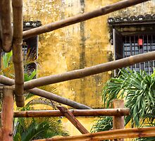 bamboo poles by Anne Scantlebury