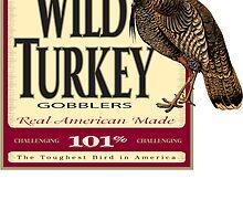 wild turkey by corsetti