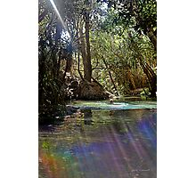 Rainbow at Katherine Hot Springs Photographic Print