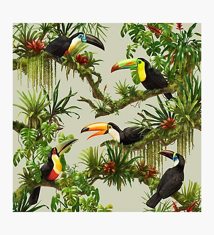 Toucans and bromeliads - canvas background Photographic Print