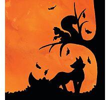 Woodland Shadows - Fox and Squirrel:Autumn Photographic Print