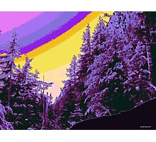 Winterland 33 Digital Image Photographic Print