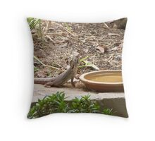 Another Bearded Dragon Lizard about to take a drink.' Mt. Pleasant. S.A. Throw Pillow