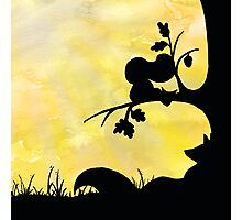 Woodland Shadows - Fox and Squirrel:Summer Photographic Print