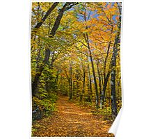 Autumn North Wood Poster