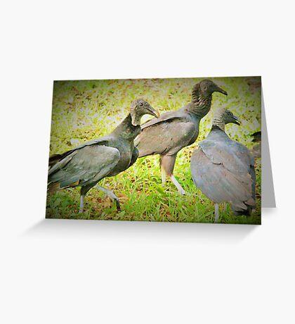 Three stooges Greeting Card