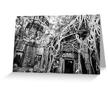 Tree hugging temple Greeting Card