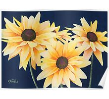 Black-Eyed Susans Two Poster