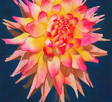 Exploding Lollipop Dahlia by Ken Powers