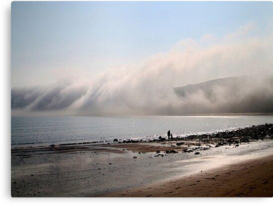 Runswick Bay  by Irene  Burdell