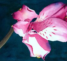 New Year Flower by Ken Powers