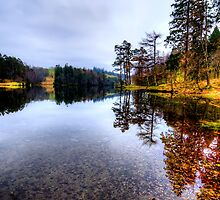 Tarn Hows, Lake District by Stephen Smith