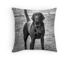 BLACK LABRADOR Throw Pillow