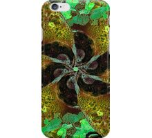 Ornament Abstract Artwork  iPhone Case/Skin