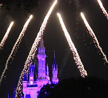 Cinderella Castle Wishes by Shendl