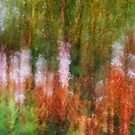Artscape  Flowers by Imi Koetz