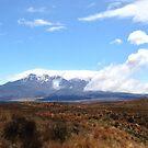 Mount Ruapehu by zijing