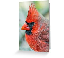 Mr. Red Chili Pepper Greeting Card
