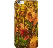 Autumn vines iPhone Case/Skin