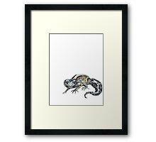 Snow Bandit Leopard Gecko Framed Print