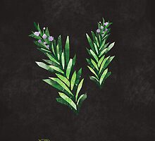 Rosemary by randoms