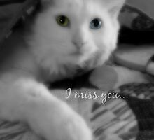 I miss you by Scott Mitchell