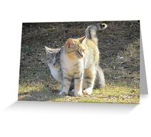 She Always Wants The Spotlight ~ Greeting Card