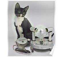 Atomic Kitten Poster