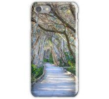 Fingal Boardwalk iPhone Case/Skin