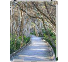 Fingal Boardwalk iPad Case/Skin