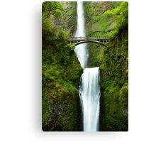 Earth and Water Canvas Print