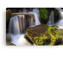 Smoky Mountains Cascade Canvas Print