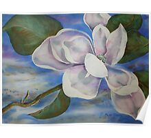 Watercolour: Magnolia Floating Poster