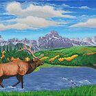 Rocky Mountain Elk by StephenLTurner