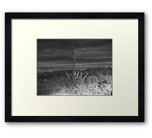 ©MS-GS Out Of The Light Spot IA Monochrome Framed Print