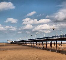 The Pier by Irene  Burdell