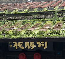 mossy roof by Anne Scantlebury