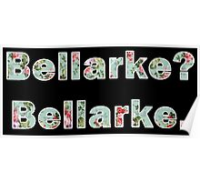 The 100 - Clarke/Bellamy (Bellarke) Poster