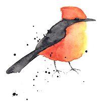 Vermilion flycatcher by ameecherie