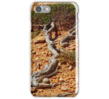 Horizontal Tree along The Great Australian Bight iPhone Case/Skin