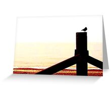Crow at the Beach  Greeting Card