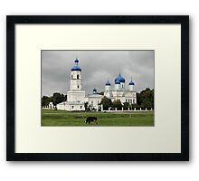 dome with stars Framed Print