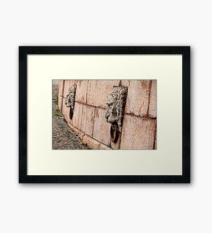 granite lion Framed Print