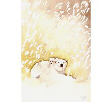 Polar Bear and Cub in the Snow Photographic Print