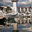 The Guardian Of Marina Vallarta by Lanis Rossi