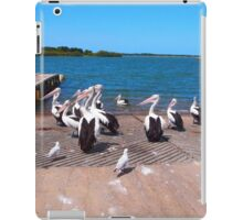 The Pelicans Yamba NSW Australia iPad Case/Skin